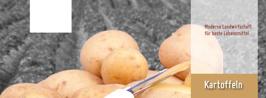 Kartoffelverkauf